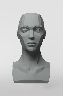 3dtotal Anatomy: Female planar bust