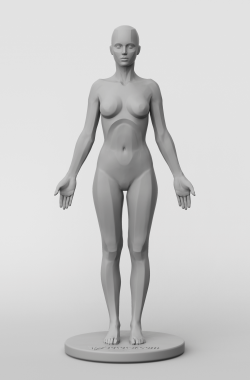 3dtotal Anatomy: female planar figure