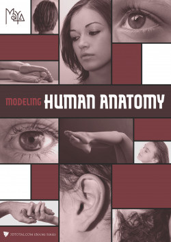 Modeling Human Anatomy - Maya (Download Only)