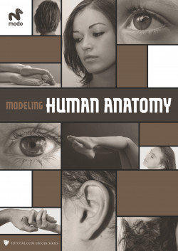 Modeling Human Anatomy - Modo (Download Only)