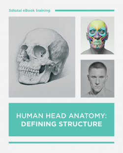 Human Head Anatomy: Defining Structure (Download Only)