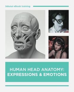 Human Head Anatomy: Expressions & Emotions (Download Only)