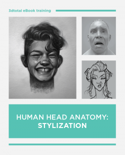 Human Head Anatomy: Stylization (Download Only)