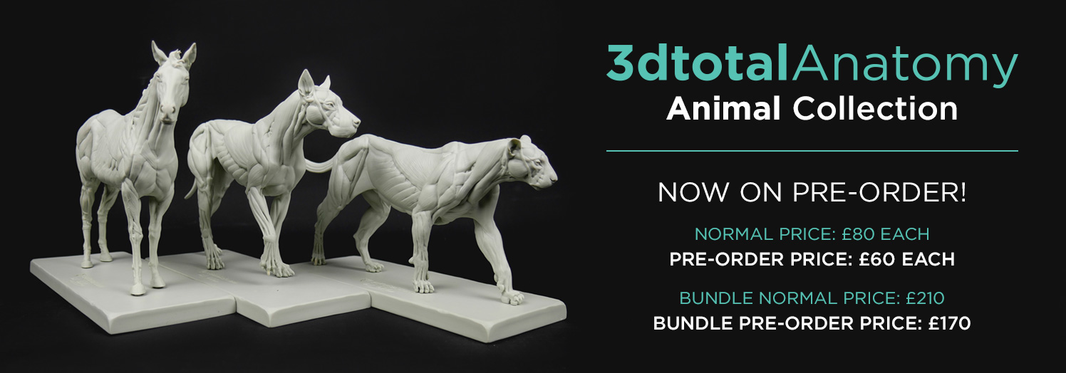 3dtotal animal anatomy figures